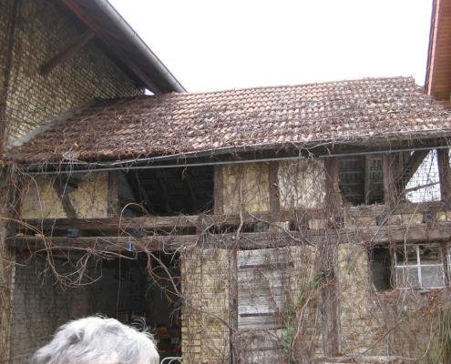 Nebengebäude einer Hofreite mit Ästen verwachsen und marodem Dach