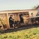 Im Hylly Kaminholzdepot lassen sich Holzscheite für das Lagerfeuer lagern.